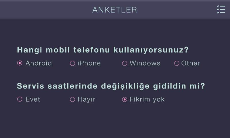 anket_widget