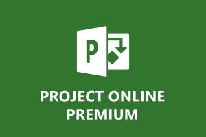 pands_project_online_premium