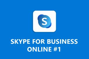 pands_skype_online1